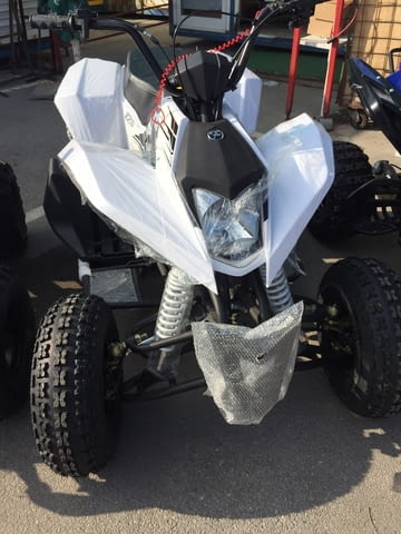 Мини АТВ ATV, Polaris, Gasoline - city of Sofia | Motors & Scooters - снимка 8